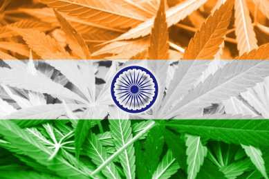 National Legalisation of Cannabis -  Trillion Dollar Economy and Happy Farmers in India