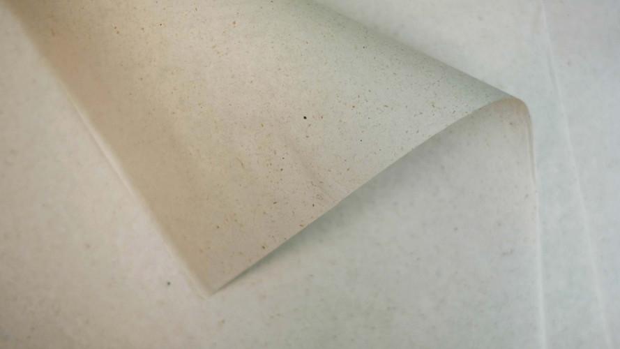 hemp-paper-1.jpg