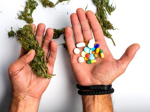 Chapter 7: Cannabis and Cancer - The Debate of the Decade (Vijaya Charita with Vikramm Mitra)