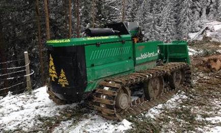Hobi Forst Forstraupe