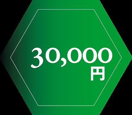 協賛金額 30,000円