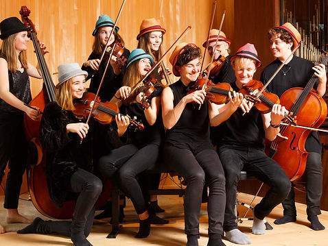 Messis Cellogruppe.jpg