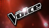 voice logo 1.jpeg