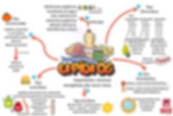 1 - Mapas metais - Bioquímica (5).JPG