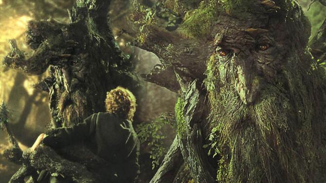 Árvores conversam entre si. Como?
