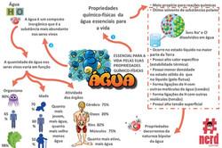 1 - Mapas metais - Bioquímica (2)
