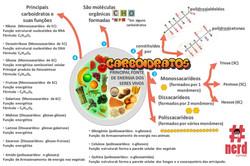 1 - Mapas metais - Bioquímica (4)