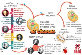 Mapas mentais 02 (1).JPG