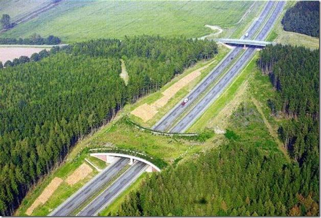 Ponte verde na Alemanha