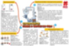 Mapas mentais - experimentos sobre a ori
