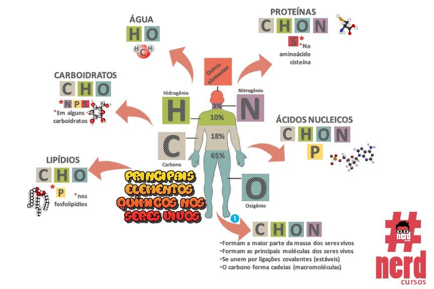 1 - Mapas metais - Bioquímica (1)