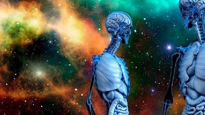 Ausência de gravidade modifica o cérebro humano.