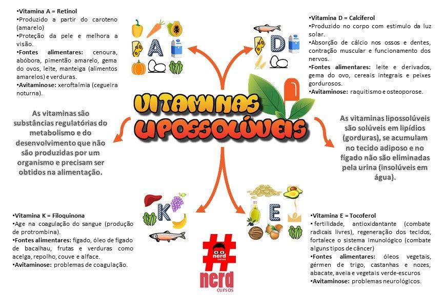 Mapas_mentais_-_vitaminas_lipossolúveis.