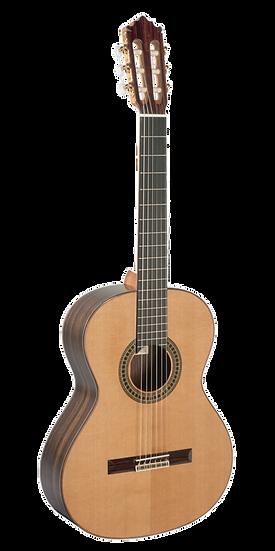 Guitarra Paco Castillo 204