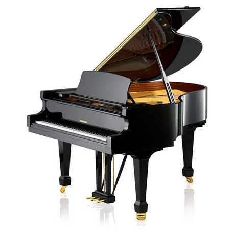 Hoffmann Piano Acustico De Cauda T-161 Negro Pol.