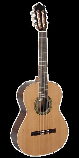 Guitarra Paco Castillo 201M