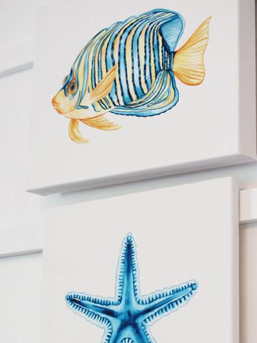 'Royal Angelfish' + 'Ocean Star' Watercolor Paintings