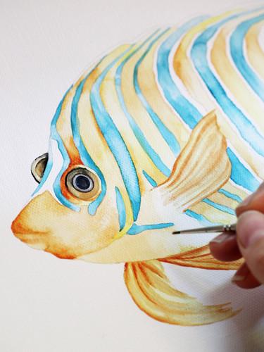 'Royal Angelfish' Watercolor Painting