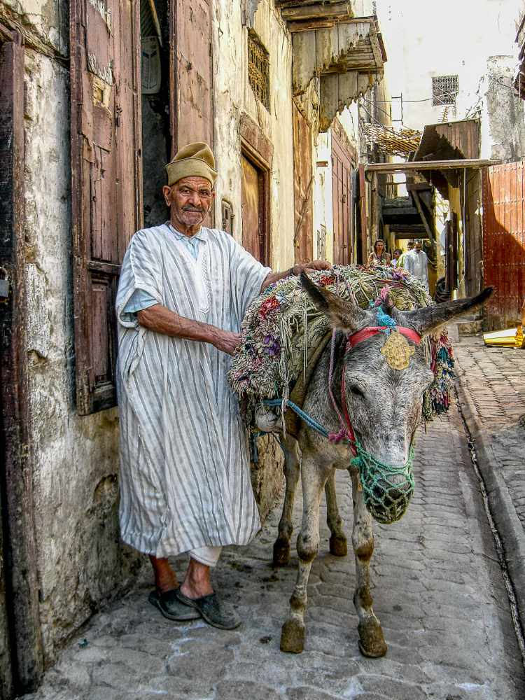 A man and his donkey - Morocco