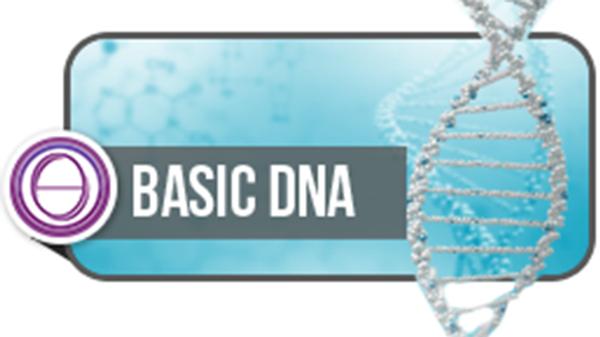 Basic DNA
