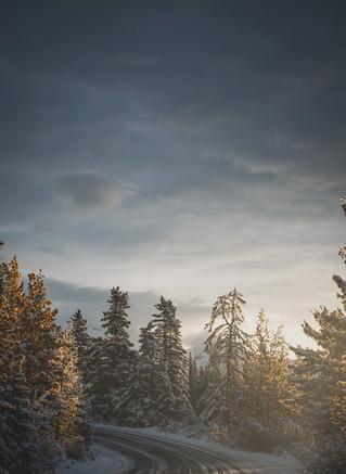 Winter Road in Canada