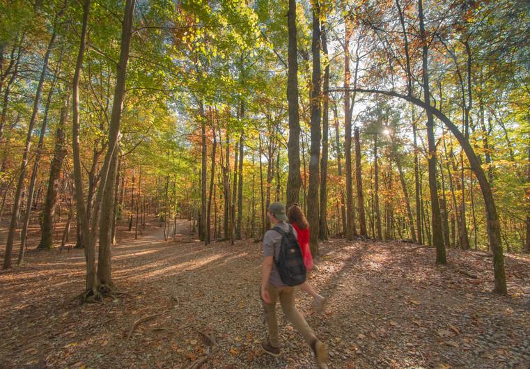 Hanging Rock State Park_North_Carolina_4