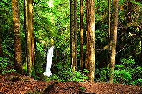 waterfalls-4487084_1920.jpg