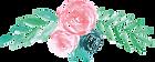 Flower_Zawaj.png