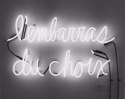 Lembarras Du Choix