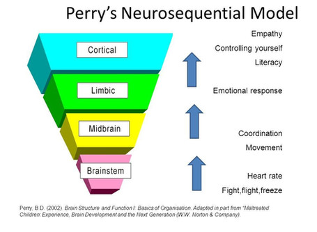 Words from Dr. Bruce Perry, Developmental Psychiatric Traumatologist