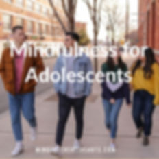 Mindfulness for Adolescents .jpg