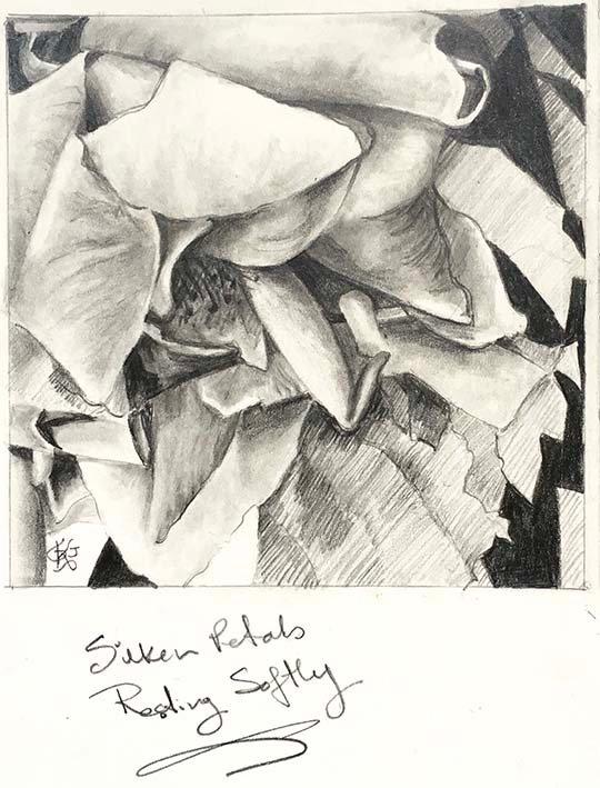 Silken Petals 1.jpg