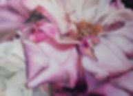 P2Feel_Mede.jpg_61x84cm_edited.jpg
