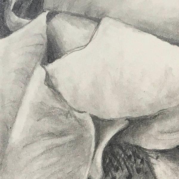 Silken Petals 2.jpg