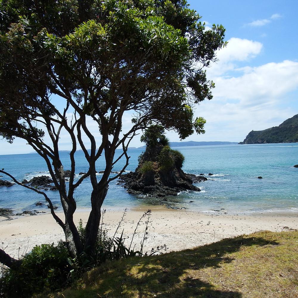 NZ beach,artist date