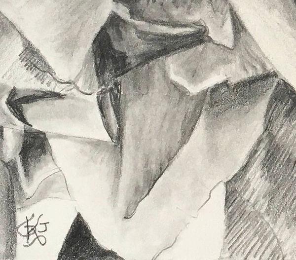 Silken Petals 4.jpg