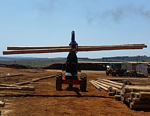 Dirker Log Handler Loading Poles At Piet Retief