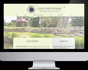 SCN website.png