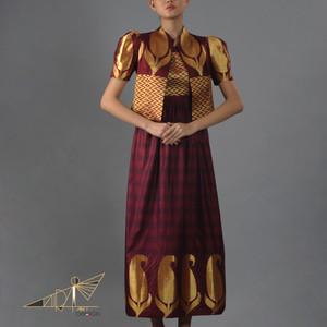 Golden and bordeaux color dress