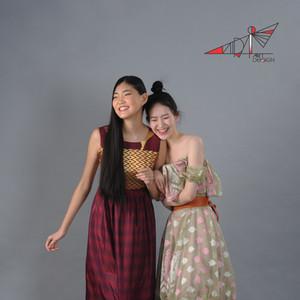 Indian saree silk dresses