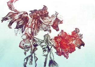 Ya. Oyunchimeg, Naturmorte, etching
