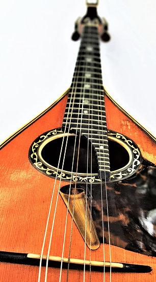 Mandoline de Concert Luigi Embergher 5 bis de 1927