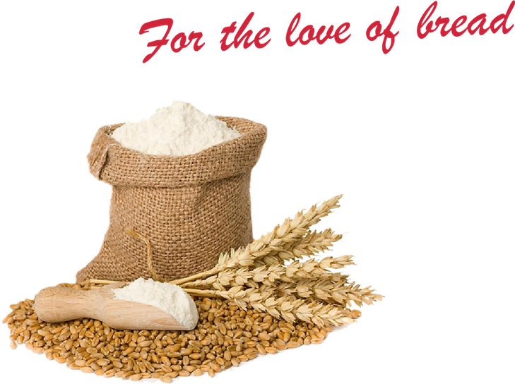 Wheat Image Website.png