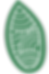 OliveSeed-logo-color-square-notext.png