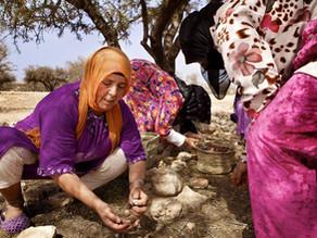 Amazigh Women & the Argan Tree
