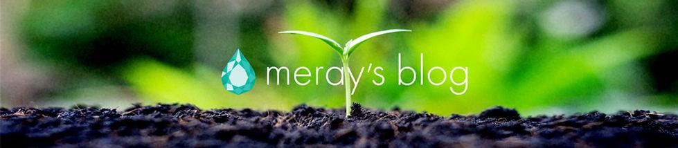 meray_blog_01.jpg