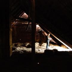 więźba dachowa nad oborą