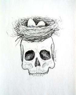Nido/Cabeza (Nest/Head)