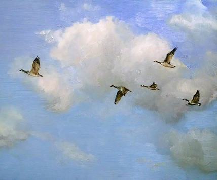 "SOLD ""Canadian Geese Cloud Study"" SOLD"