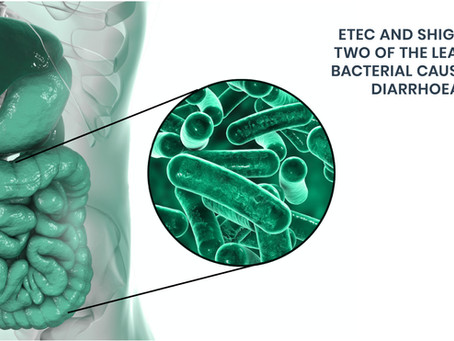 Eveliqure's effort to develop a Shigella-ETEC combination vaccine is supported by the Wellcome Trust